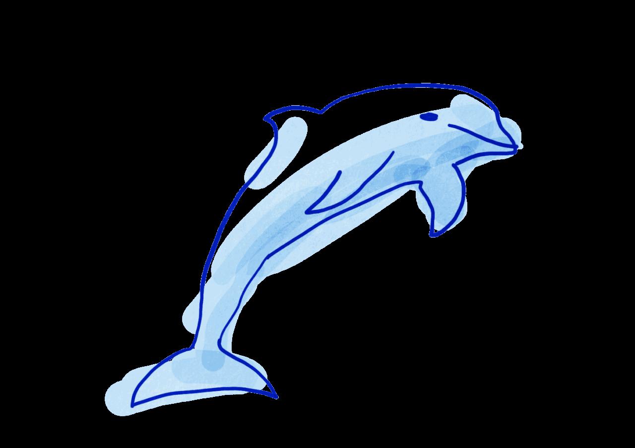 dauphin vie sans plastique