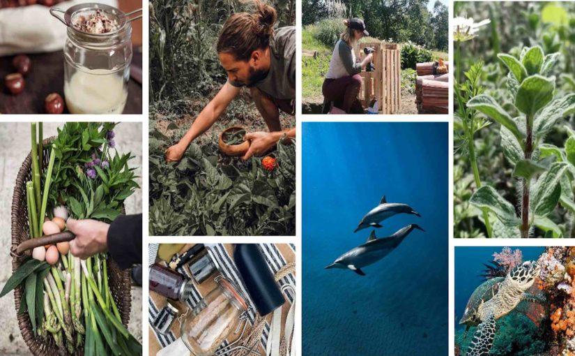 instagram Castalie ecologie planete