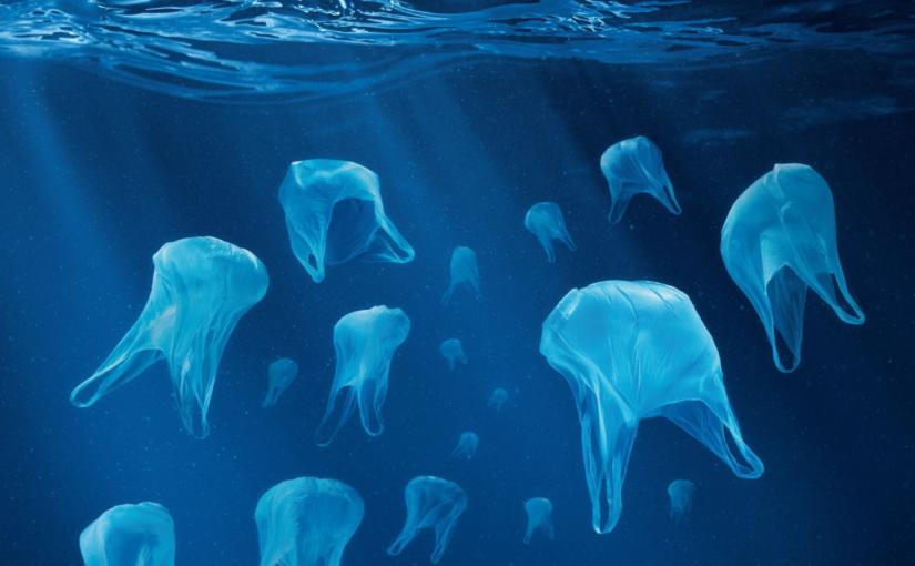 écologie plastique ocean