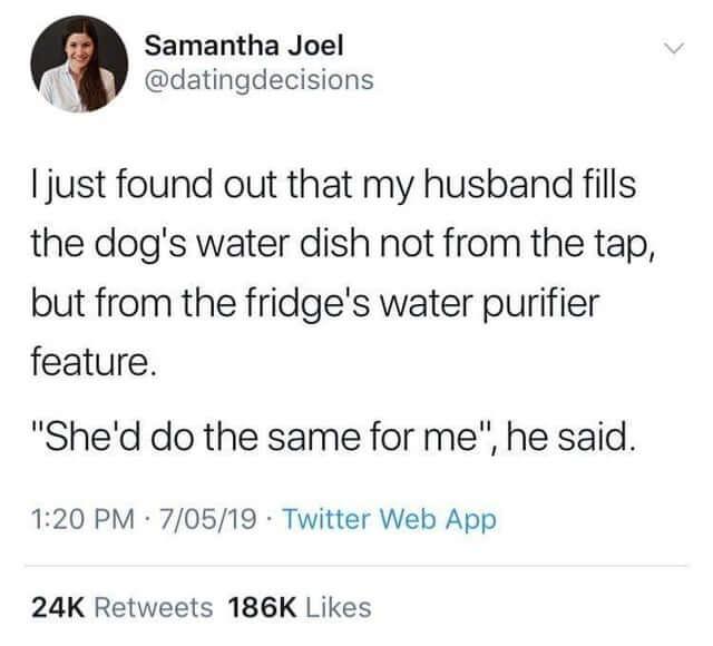eau donnée au chien