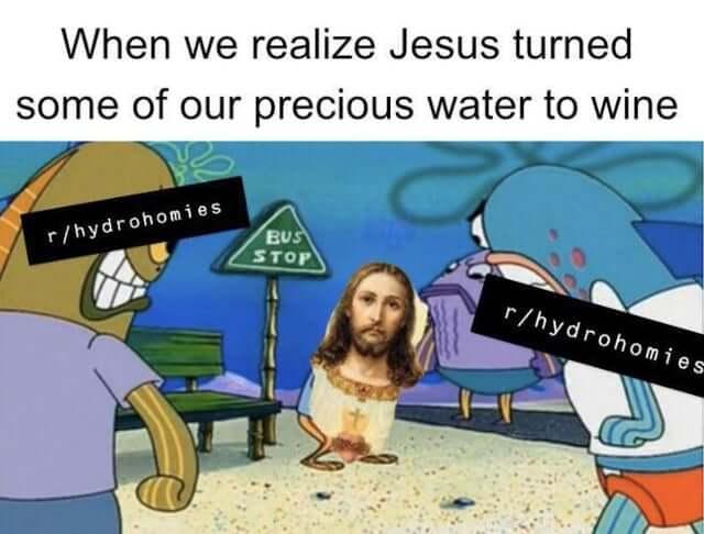 Quand tu réalises que Jésus a transformé notre précieuse eau en vin.