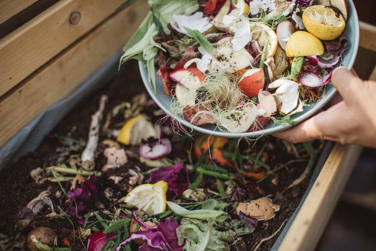 compost-aliments-zero-dechet